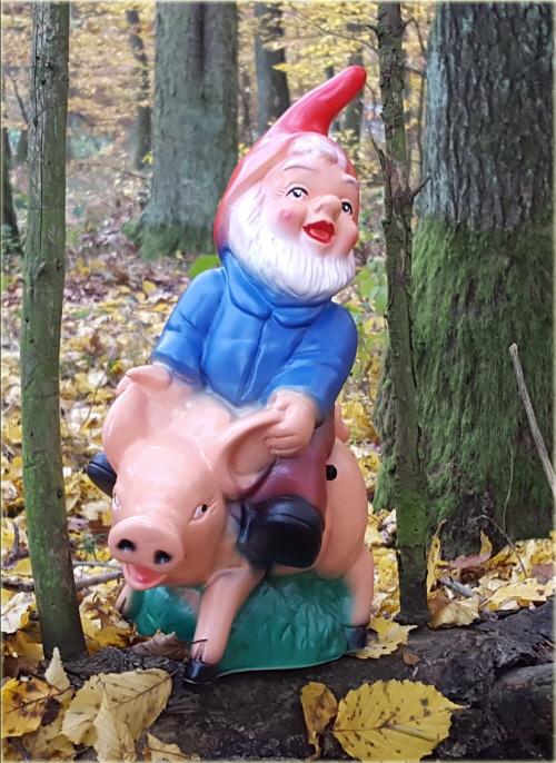 Gartenzwerg auf Schwein, mit Bewegungsmelder